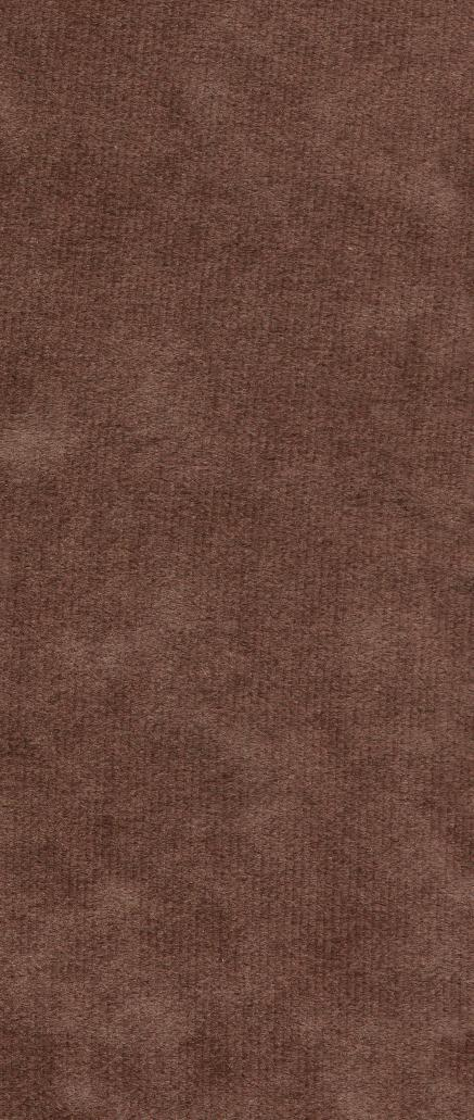 textures/library/fabric/Carpet2.jpg