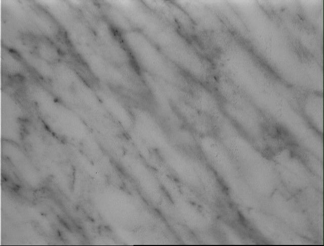 textures/library/marble/marbre2.jpg