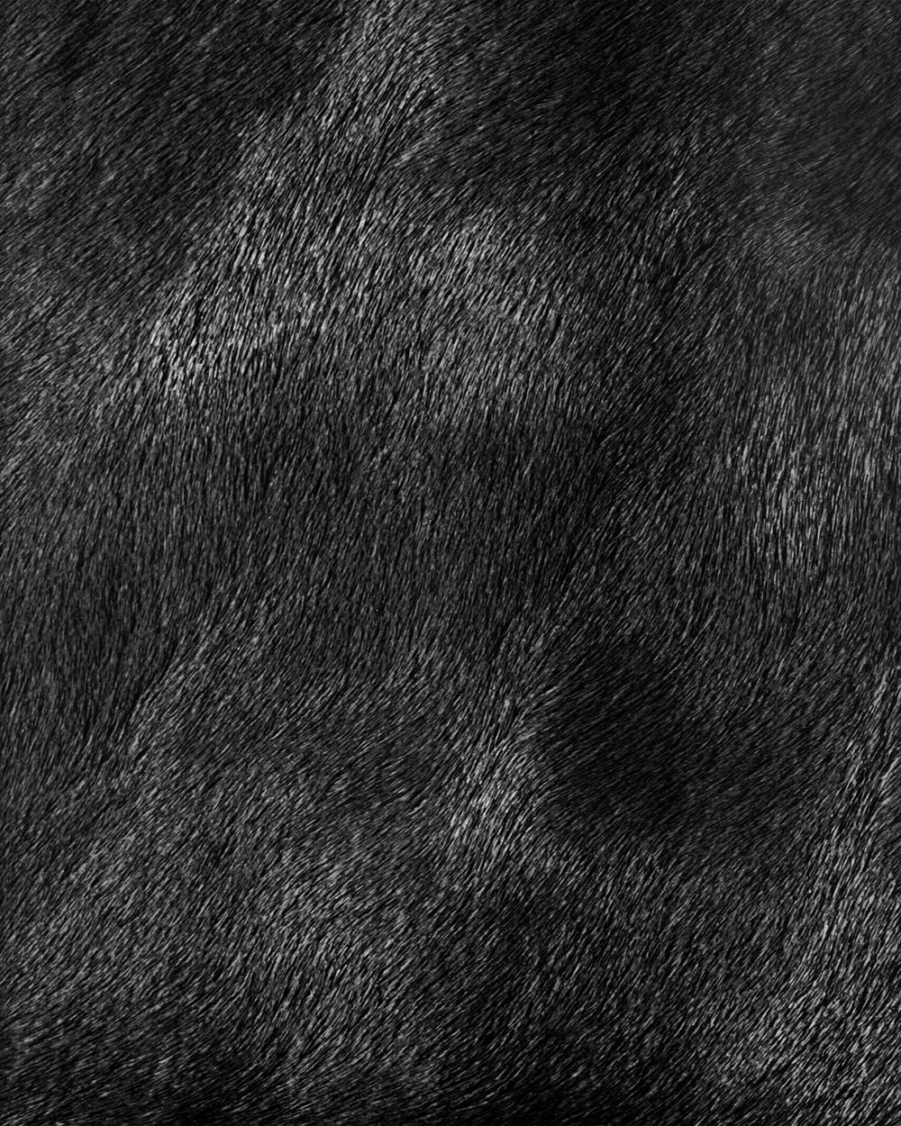 Textures library - free surfaces for 3ds Max, LightWave: textures.forrest.cz/index.php?spgmGal=skinandfur&spgmPic=20
