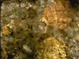 textures/library/water/S_S_IMG0061.jpg