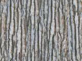 textures/library/wood/S_S_Wood03l.JPG