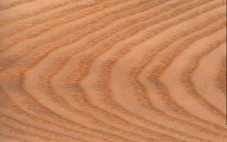 textures/library/wood/whiteash.jpg